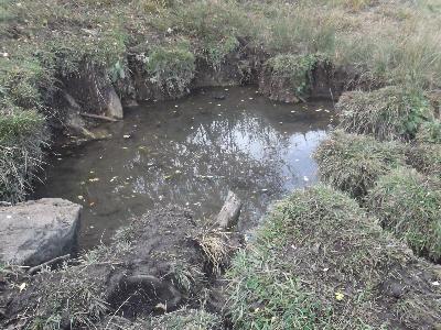 Imagen de FUENTARRÓN DE LA MUELA