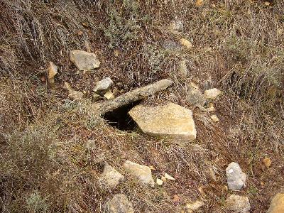Imagen de TÍO TORTAS