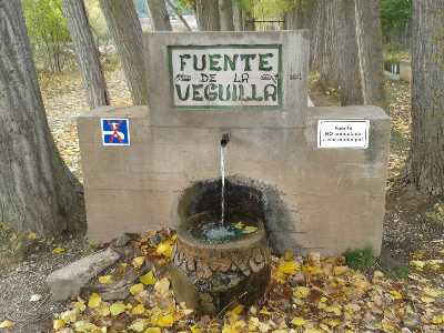 Imagen de VEGUILLA